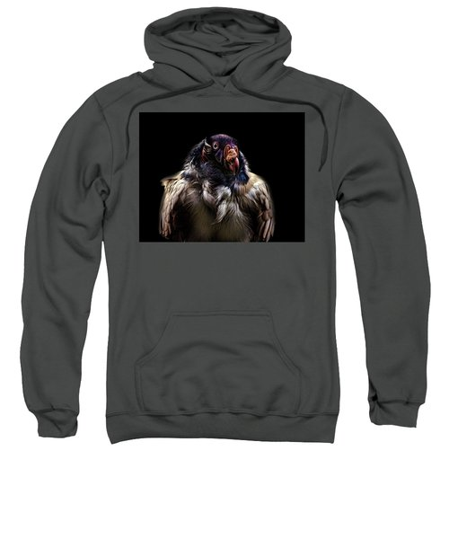 Bad Birdy Sweatshirt