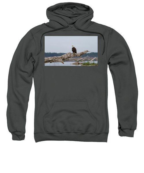 Bald Eagle #1 Sweatshirt
