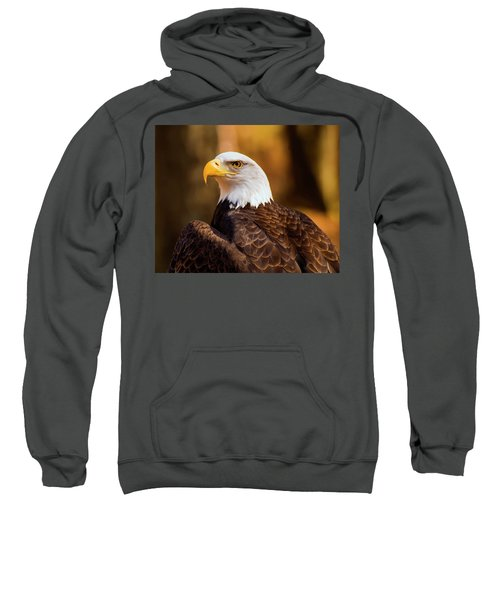 Bald Eagle 2 Sweatshirt