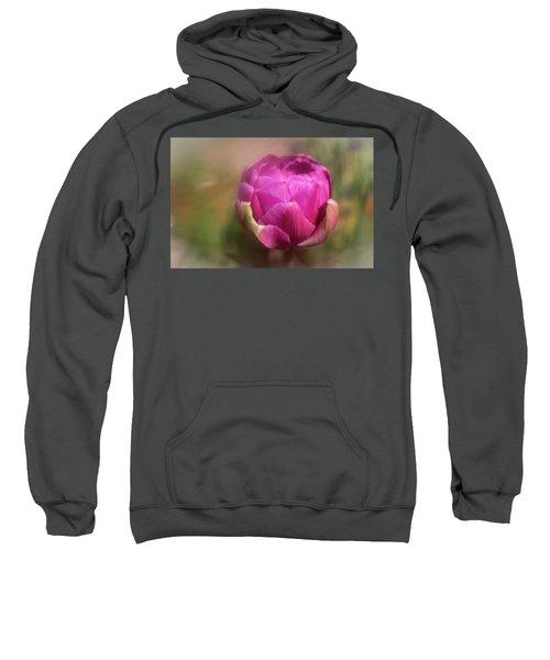 Ball Of Colour Sweatshirt