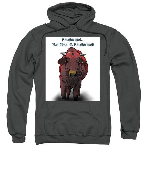 Bangerang Sweatshirt