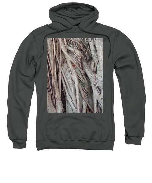 Banyan In Maui Sweatshirt