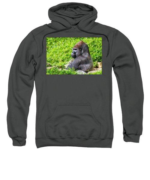 Baraka - Western Lowalnd Silverback Gorilla Sweatshirt