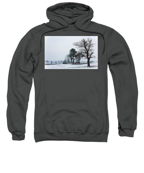 Bare Trees In The Snow Sweatshirt