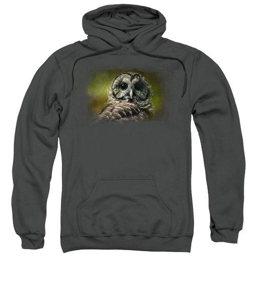 Barred Owl In The Grove Sweatshirt by Jai Johnson