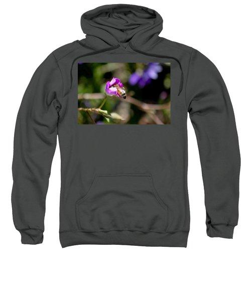 Bashful Bee  Sweatshirt