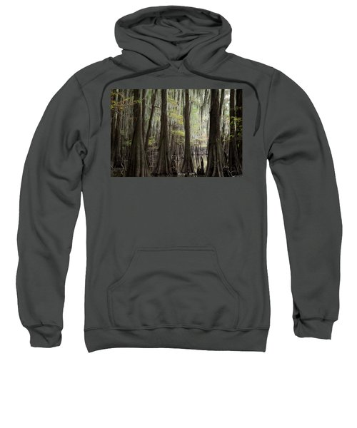 Bayou Trees Sweatshirt