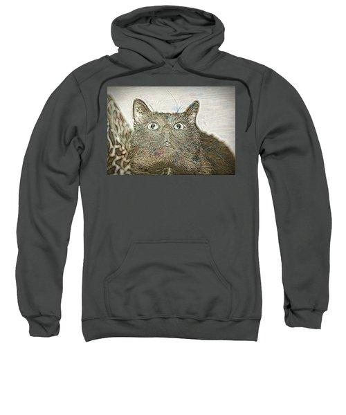 Bb Gazing Sweatshirt