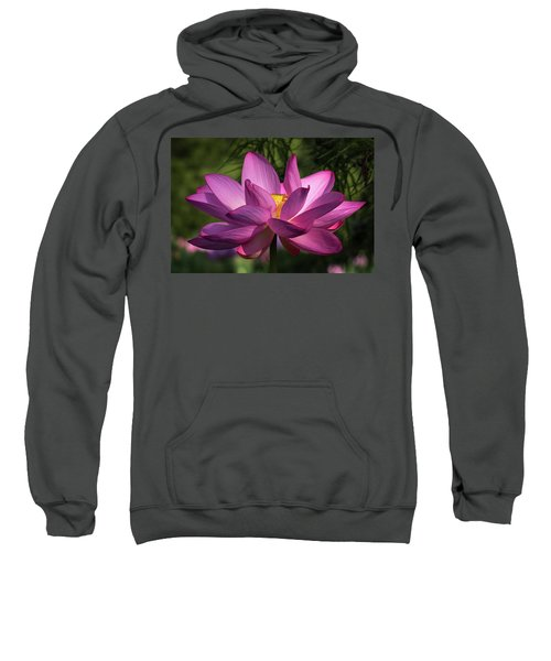 Be Like The Lotus Sweatshirt