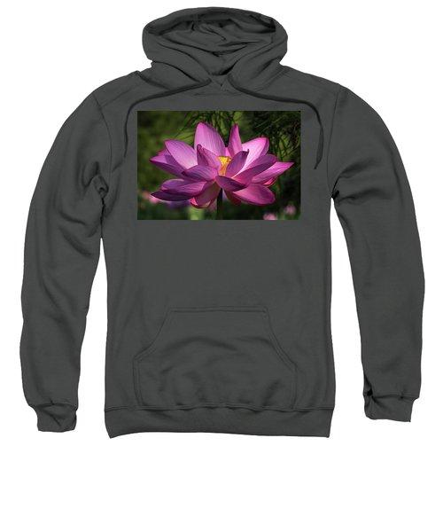 Be Like The Lotus Sweatshirt