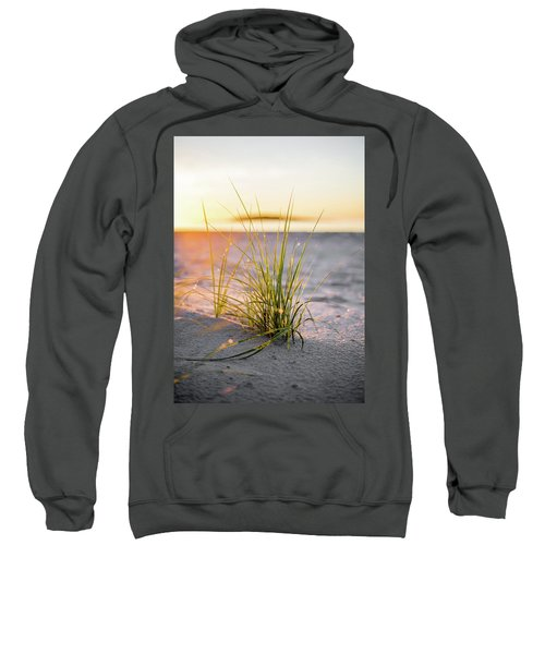 Beach Grass Sweatshirt