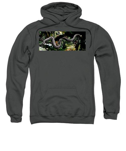 Beach Guardian Sweatshirt