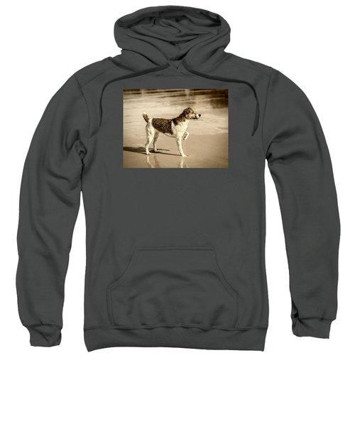 Beach Ready Sweatshirt