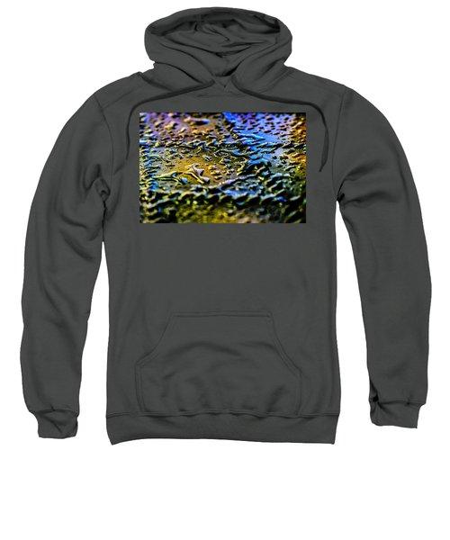 Beaded Water Texture Sweatshirt