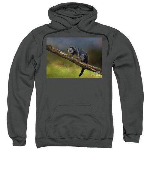 Bearcat Sweatshirt