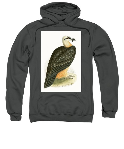 Bearded Vulture Sweatshirt
