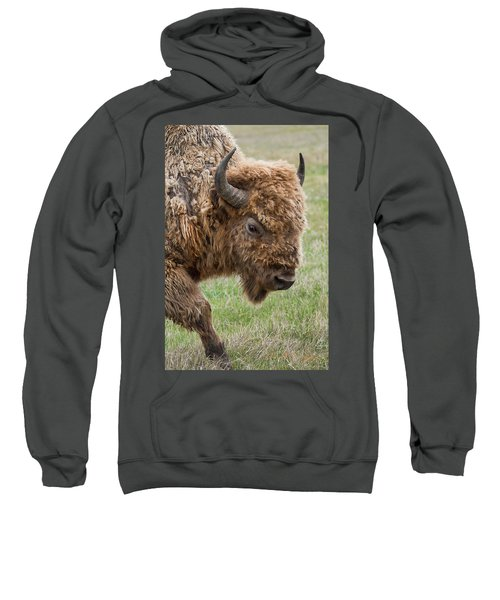 The Beast Sweatshirt