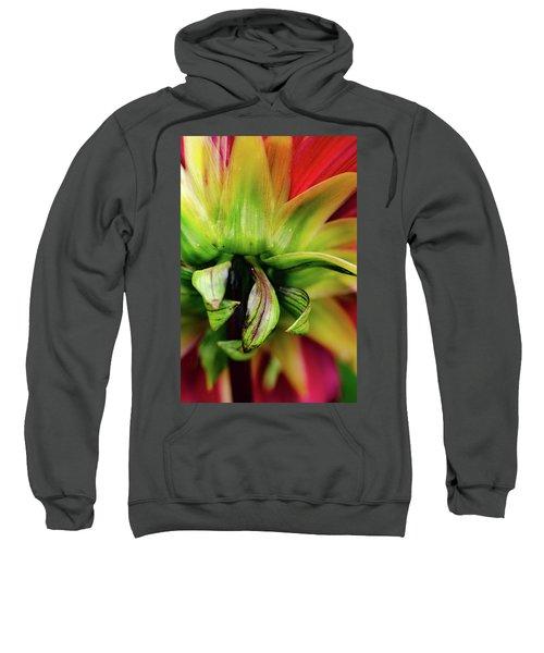 Beautiful Backside Sweatshirt