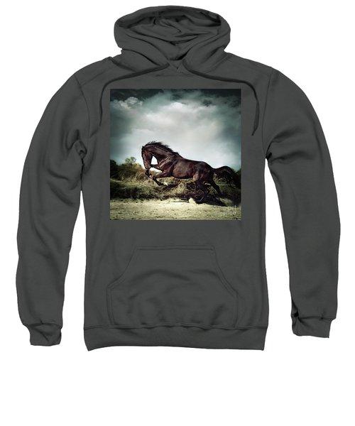 Beautiful Black Stallion Horse Running On The Stormy Sky Sweatshirt