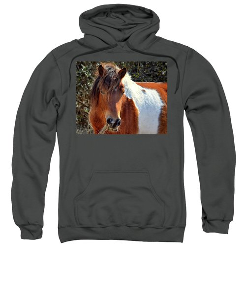 Beautiful Mare Ms. Macky Sweatshirt