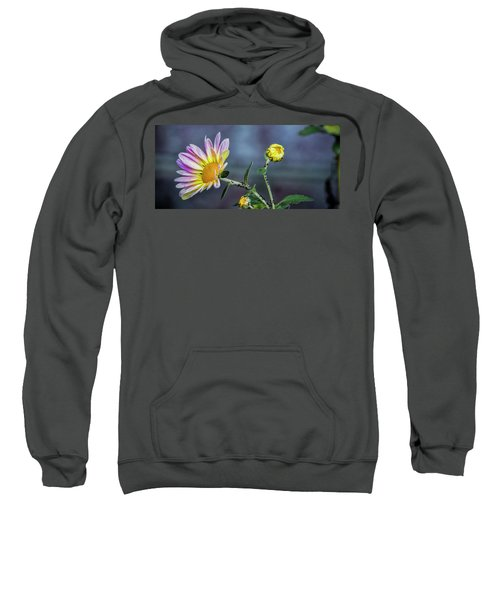 Beauty And The Beasts Sweatshirt