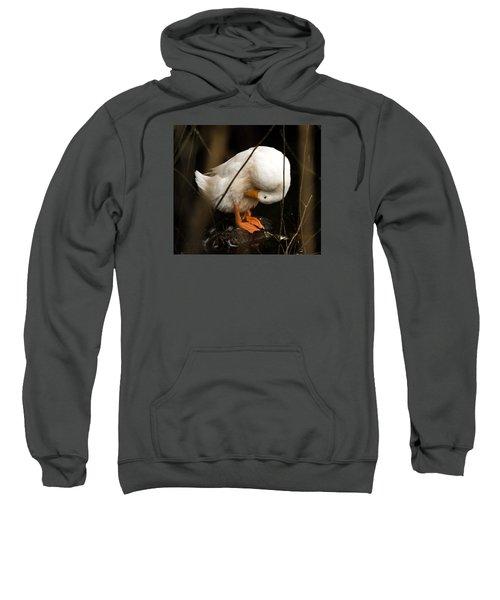Beauty In Motion Sweatshirt