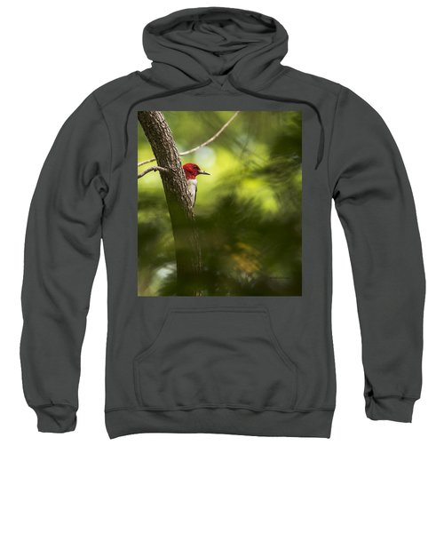 Beauty In The Woods Sweatshirt