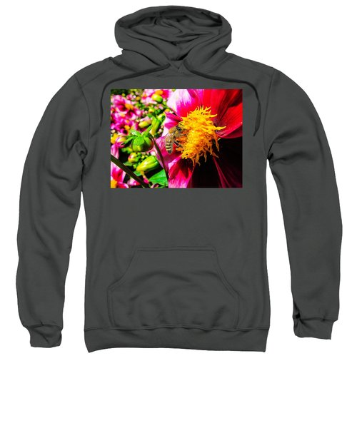 Beauty Of The Nature Sweatshirt