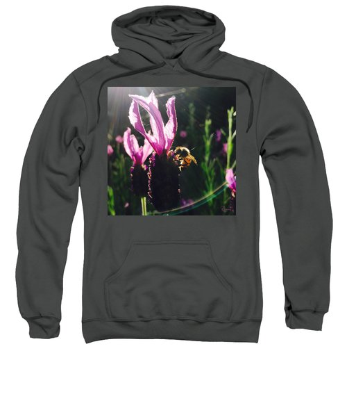 Bee Illuminated Sweatshirt