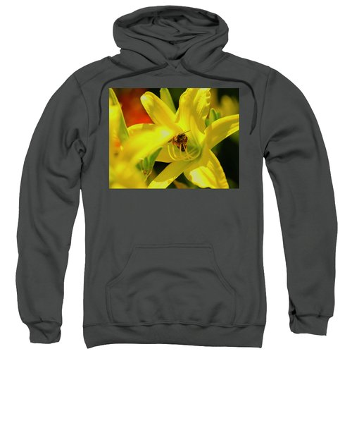 Bee On Yellow Lilly Sweatshirt