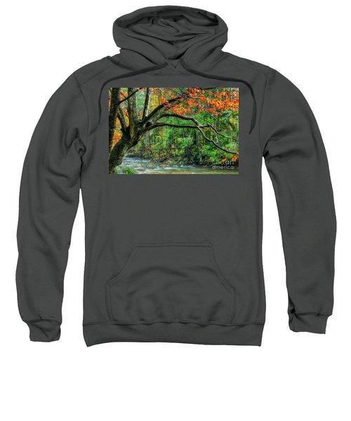 Beech Tree And Swinging Bridge Sweatshirt