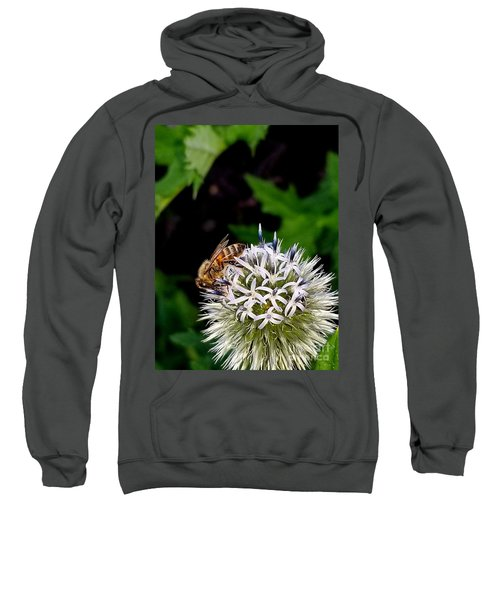 Beeing Seen Sweatshirt