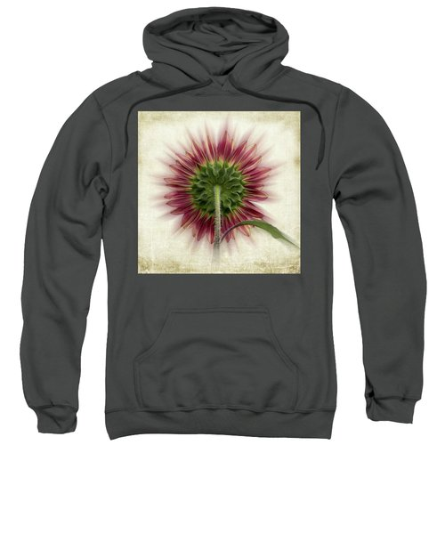 Behind The Sunflower Sweatshirt