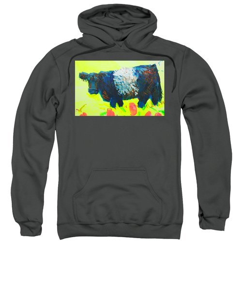 Belted Galloway Cow Looking At You Sweatshirt