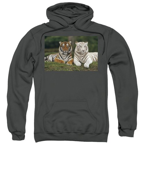 Bengal Tiger Team Sweatshirt