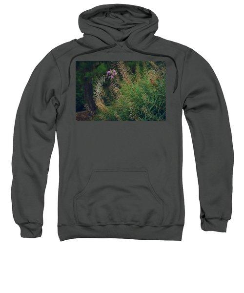 Bent  Sweatshirt