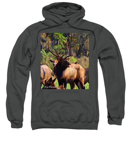 Big Elk Sweatshirt