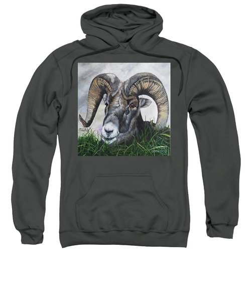 Big Horned Sheep Sweatshirt