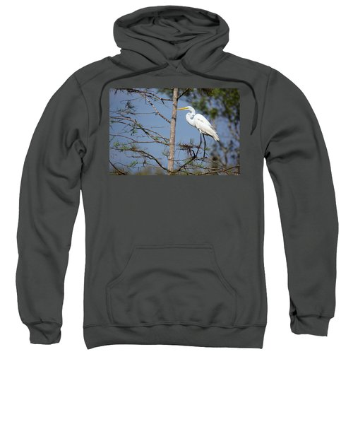 Bird 154 Sweatshirt