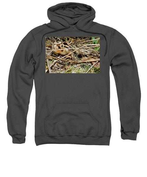 Bird Banding - Woodcock Sweatshirt