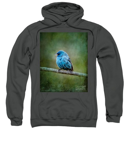 Bird In Blue Indigo Bunting Ginkelmier Inspired Sweatshirt
