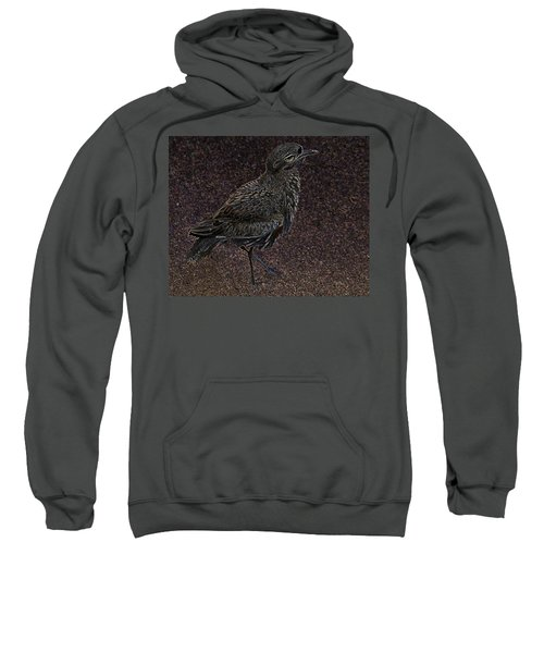 Bird No. 40-1 Sweatshirt by Sandy Taylor
