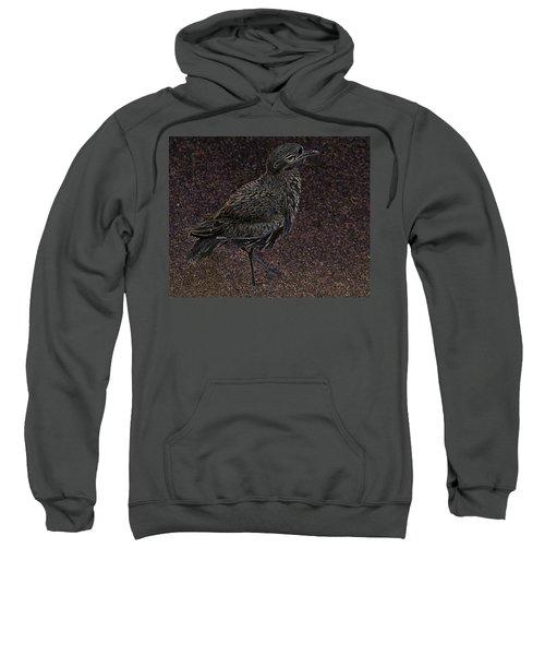 Bird No. 40-1 Sweatshirt