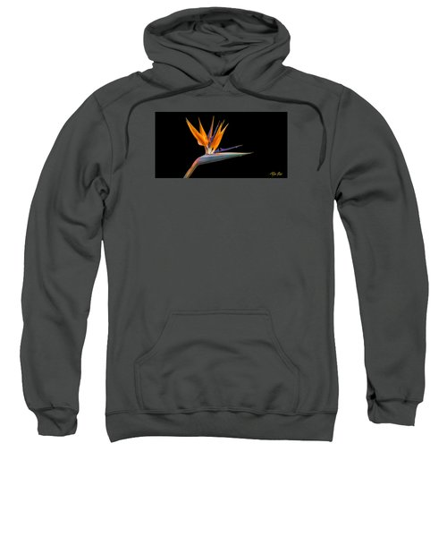 Sweatshirt featuring the photograph Bird Of Paradise Flower On Black by Rikk Flohr