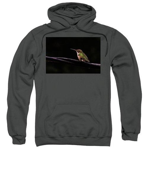 Bird On A Wire Sweatshirt