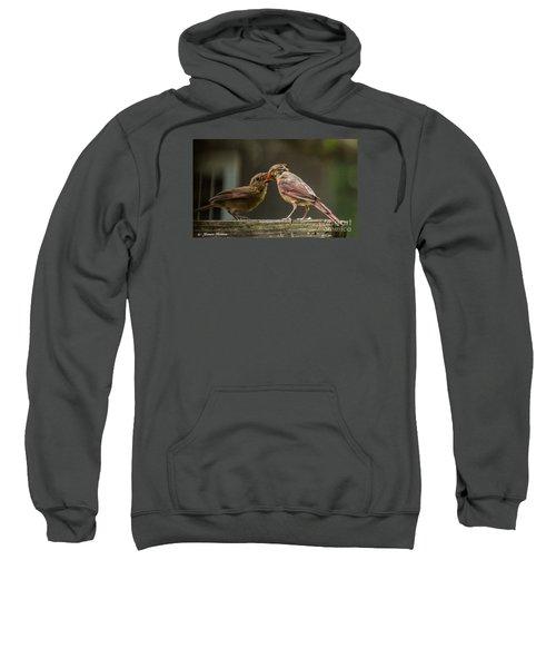 Bird Parenting Sweatshirt