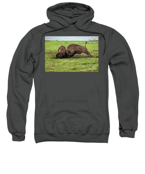 Bison Fighting Sweatshirt