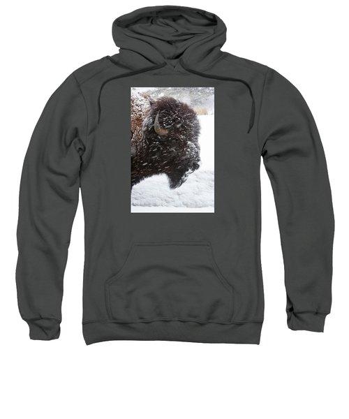 Bison In Snow Sweatshirt