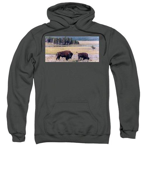 Bison In Yellowstone Sweatshirt