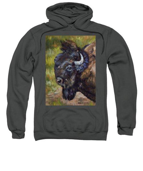 Bison Study 5 Sweatshirt